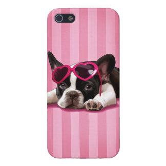 Perrito del dogo francés iPhone 5 cobertura