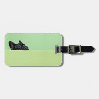 Perrito del dogo francés que mira sobre la pared etiquetas bolsa