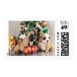 Perrito del dogo francés y regalos del navidad sello