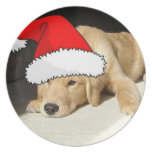 Perrito del golden retriever del navidad platos