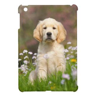 Perrito del golden retriever en un prado un cutie iPad mini cobertura