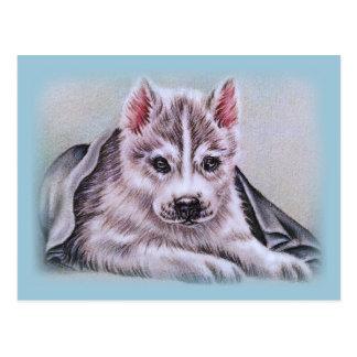 Perrito del husky siberiano con el dibujo tarjeta postal