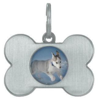 Perrito del husky siberiano placa de nombre de mascota