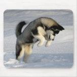 Perrito del husky siberiano que juega en la nieve tapete de ratones