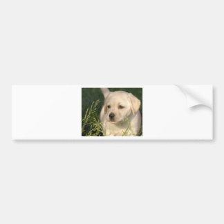 Perrito del labrador retriever pegatina de parachoque