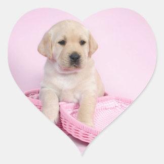 Perrito del labrador retriever en fondo rosado pegatina corazon personalizadas