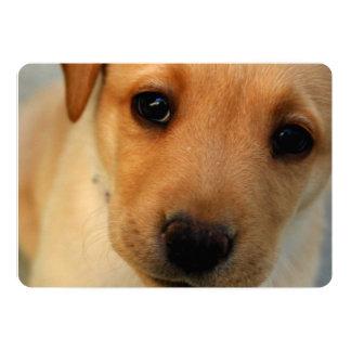 Perrito del labrador retriever invitación 12,7 x 17,8 cm
