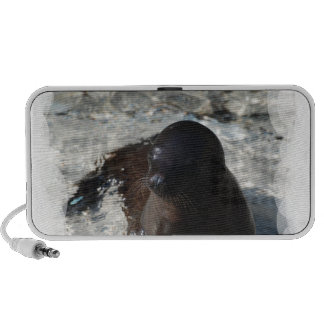 Perrito del león marino iPhone altavoces