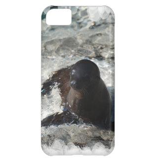 Perrito del león marino funda para iPhone 5C