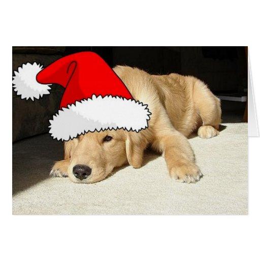 Perrito del navidad del golden retriever felicitación