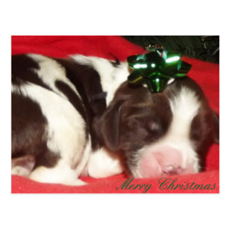 Perrito del navidad del perro de aguas de saltador postales