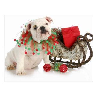 Perrito del navidad - sentada inglesa del perrito postal
