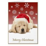 Perrito del navidad tarjetas