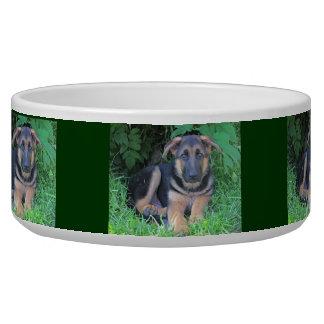 Perrito del pastor alemán - cuenco del perro comedero para mascota