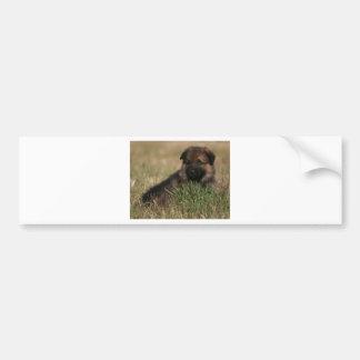 """Perrito del pastor alemán """"el puesto de observació etiqueta de parachoque"""