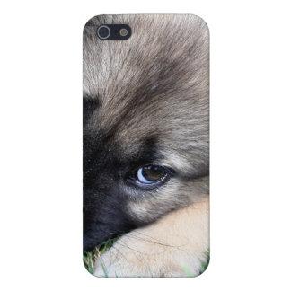 Perrito del pastor alemán iPhone 5 cobertura