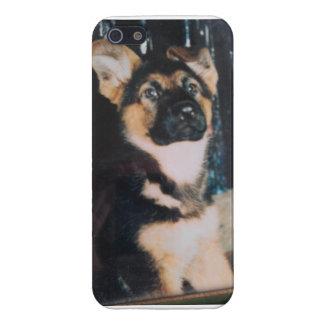 Perrito del pastor alemán iPhone 5 carcasas