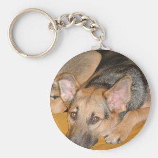Perrito del pastor alemán llavero personalizado