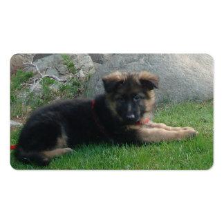 perrito del pastor alemán que pone 2.png tarjetas de visita