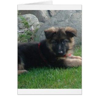 perrito del pastor alemán que pone 2.png tarjeta de felicitación