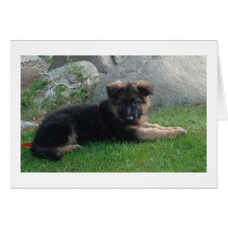 perrito del pastor alemán que pone 2.png tarjeta pequeña