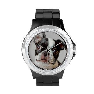 Perrito del perro de Boston Terrier Relojes De Mano