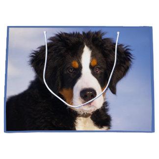 Perrito del perro de montaña de Bernese Bolsa De Regalo Grande