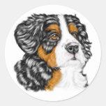 Perrito del perro de montaña de Bernese Etiquetas Redondas