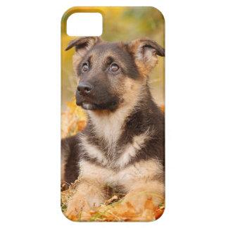 Perrito del perro de pastor alemán del otoño iPhone 5 Case-Mate funda