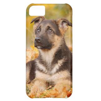 Perrito del perro de pastor alemán del otoño