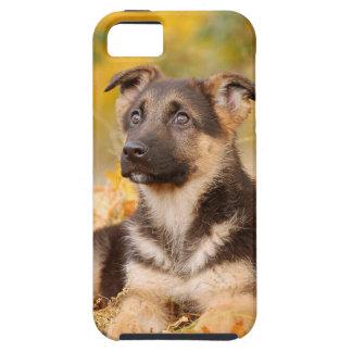 Perrito del perro de pastor alemán del otoño iPhone 5 carcasa