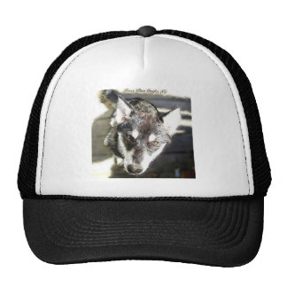 Perrito del perro de trineo - bosquejo gorras