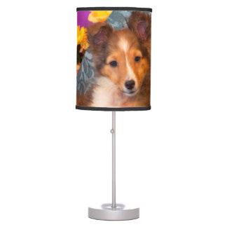 Perrito del perro pastor de Shetland en una caja Lámpara De Mesilla De Noche