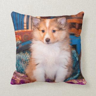 Perrito del perro pastor de Shetland que se sienta Cojín