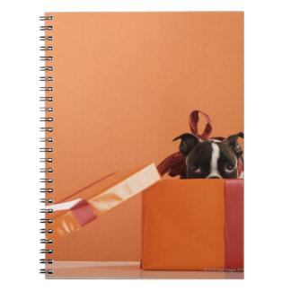 Perrito del terrier de Boston en caja de regalo Libreta Espiral