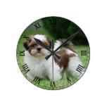 Perrito del tzu de Shih Reloj
