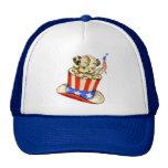 Perrito del vintage con el gorra de la bandera