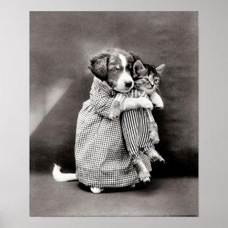 Perrito del vintage y poster del gatito
