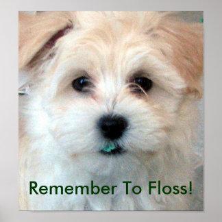 Perrito dental de la seda de la higiene póster