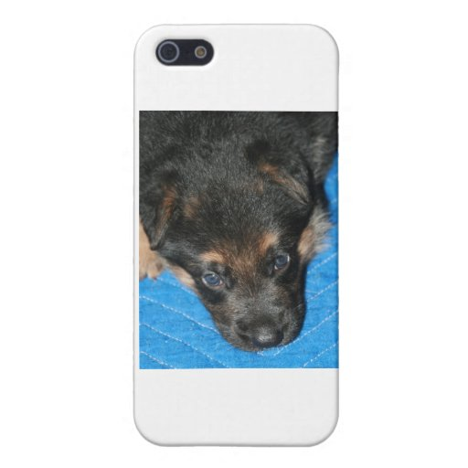 """Perrito """"diesel soñoliento """" de GSD iPhone 5 Carcasa"""