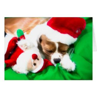 Perrito el dormir del navidad con la tarjeta del j