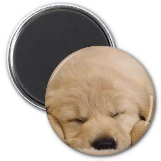 Perrito el dormir imán redondo 5 cm