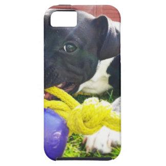 Perrito en el juego iPhone 5 carcasa