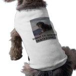 Perrito en un monopatín ropa de perros