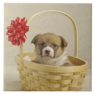 Perrito en una cesta azulejo cuadrado grande