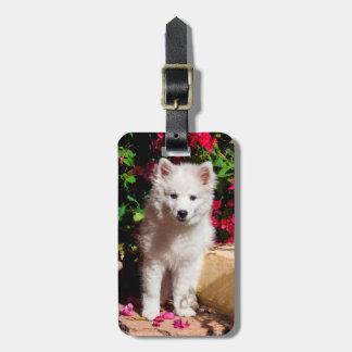 Perrito esquimal americano que se sienta en las etiquetas bolsa