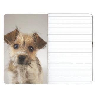 Perrito (familiaris del Canis) Cuadernos