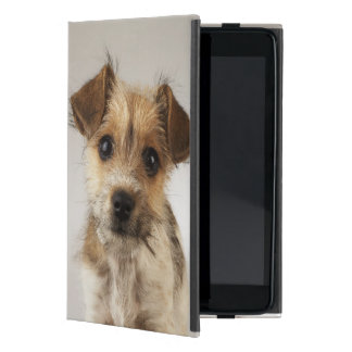 Perrito (familiaris del Canis) iPad Mini Protector