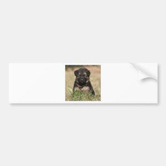 """Perrito """"filón """" alemán del pastor pegatina de parachoque"""