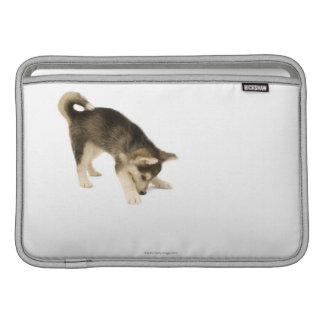Perrito fornido 2 fundas MacBook